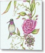 Hummingbird And Rose Metal Print
