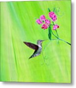 Hummingbird And Sweet Peas Metal Print