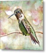 Hummingbird Art Metal Print by Bonnie Barry