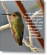 Hummingbird Christmas Card Metal Print