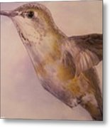 Hummingbird Metal Print by Crispin  Delgado