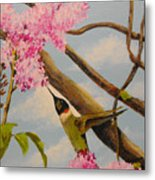 Hummingbird Feeding On Lilac Metal Print