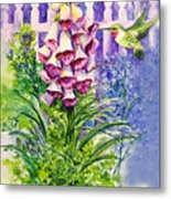 Hummingbird In Foxgloves  Metal Print