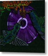 Hummingbird Morning Glory Metal Print