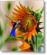 Hummingbird On Sunflower Metal Print
