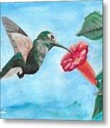 Hummingbird Trumpet Metal Print
