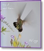 Hummingbird Wings Metal Print