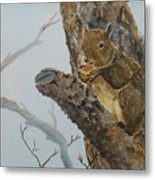 Hungry Squirrel Metal Print