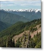 Hurricane Ridge View Metal Print