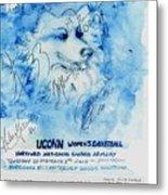 Huskies Team And Mascot-armory 2005 Metal Print