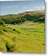 Hutton's Bog View. Holyrood Park. Metal Print