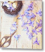 Hyacinth Flowers And Nest Metal Print
