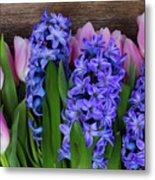 Hyacinths And Tulips II Metal Print