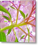 Hydrangea Flower Inside Floral Art Prints Baslee Troutman Metal Print