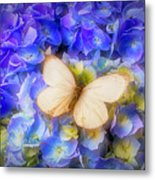 Hydrangea With White Butterfly Metal Print