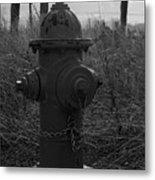 Hydrant Metal Print