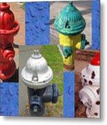 Hydrants 2 Metal Print