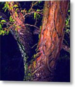 I Am Tree Metal Print