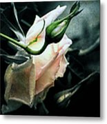I Am Your Ghost Of A Rose Metal Print