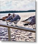 I Can See You Watching Us Metal Print