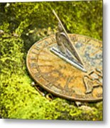 I Count None But Sunny Hours Metal Print