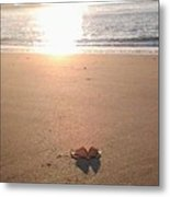 I Found Sun Shades By The Sea Shore Metal Print