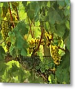 I Heard It On The Grapevine Metal Print