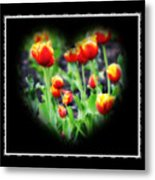 I Heart Tulips - Black Background Metal Print