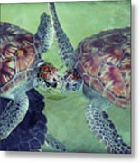 I Kissed A Turtle And I Liked It Metal Print