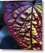 I Leaf You Metal Print