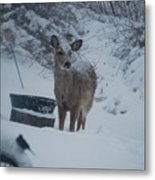 I Love Snow Metal Print