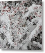 I Love Winter Metal Print
