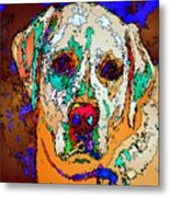 I Love You. Pet Series Metal Print