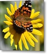 I Love Your Nectar Metal Print