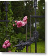 I Never Promised You A Rose Garden Metal Print