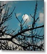 I See The Moon Metal Print