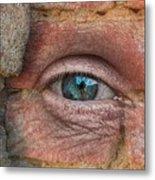 I Spy With My Little Eye Metal Print