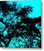 I Think That I Shall Never See A Poem Lovely As A Tree Metal Print