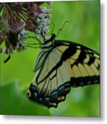 I Want To Be A Butterfly Metal Print