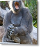 I Want To Sing..... Metal Print