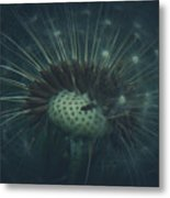 I Will Always Wish For You Metal Print