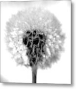 I Wish In Black And White Metal Print