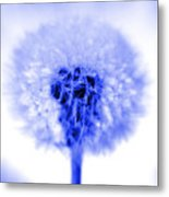 I Wish In Blue Metal Print
