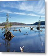 Iago Springs 9500 Metal Print