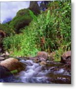Maui Hawaii Iao Valley State Park Metal Print