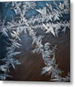 Ice Crossing Metal Print