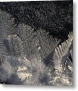 Ice Crystals Form Feather Shapes On Ice Metal Print