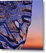 Ice Lord Metal Print