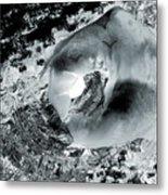 Ice, Moonlight, Magic Metal Print