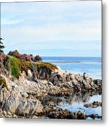 Ice Plant Along The Monterey Shore 2 Metal Print